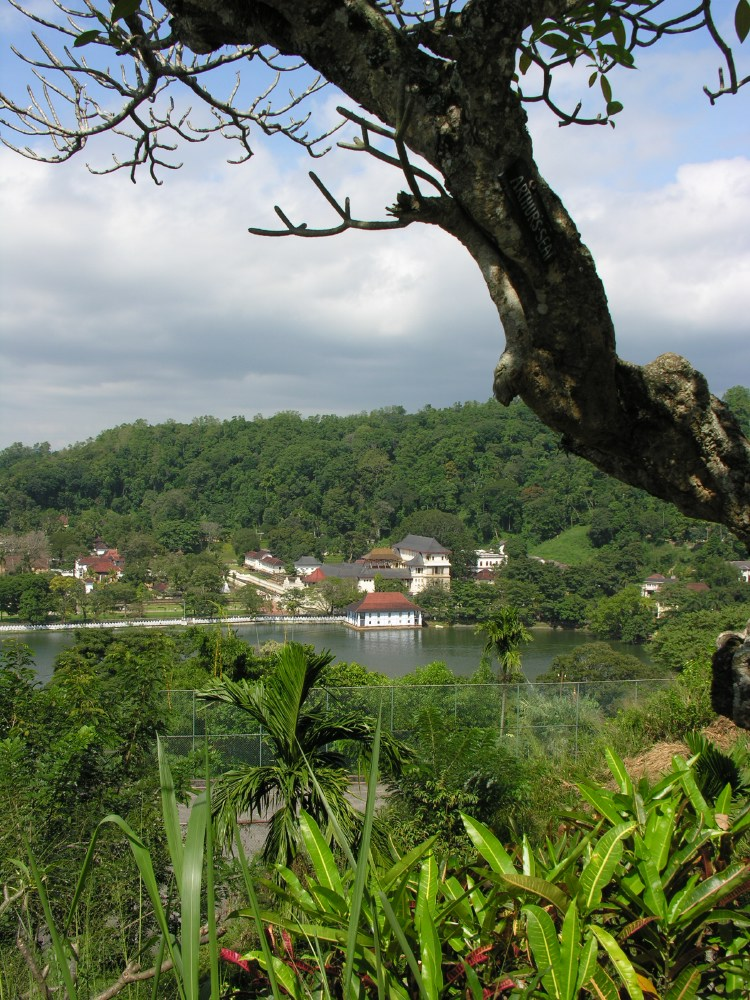 As the capital, Kandy had become home to the relic of the tooth of the Buddha which symbolises a 4th-century tradition that used to be linked to royalty since the protector of the relic was seen fit to rule the land.