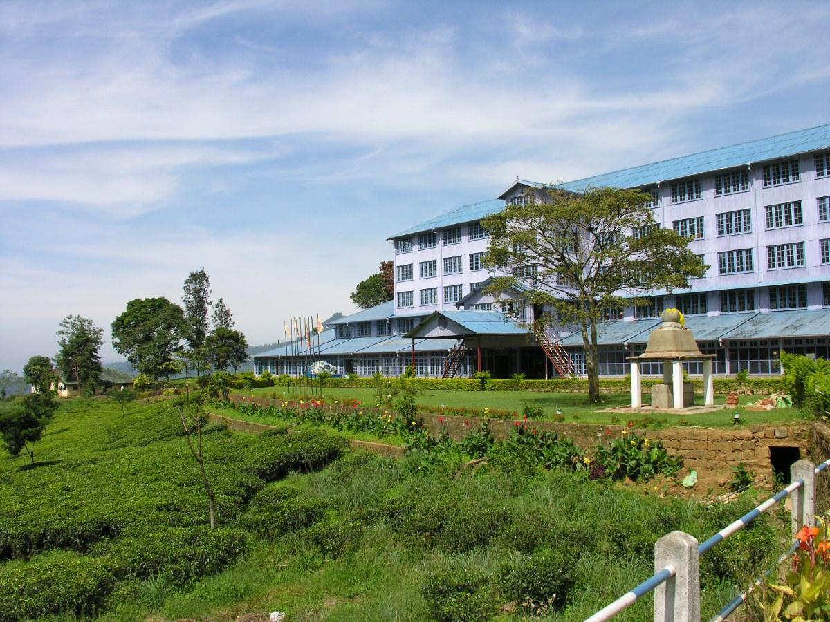 The slow-growing tea bushes of the Nuwara Eliya highland region produce some of the world's finest Orange Pekoe tea.