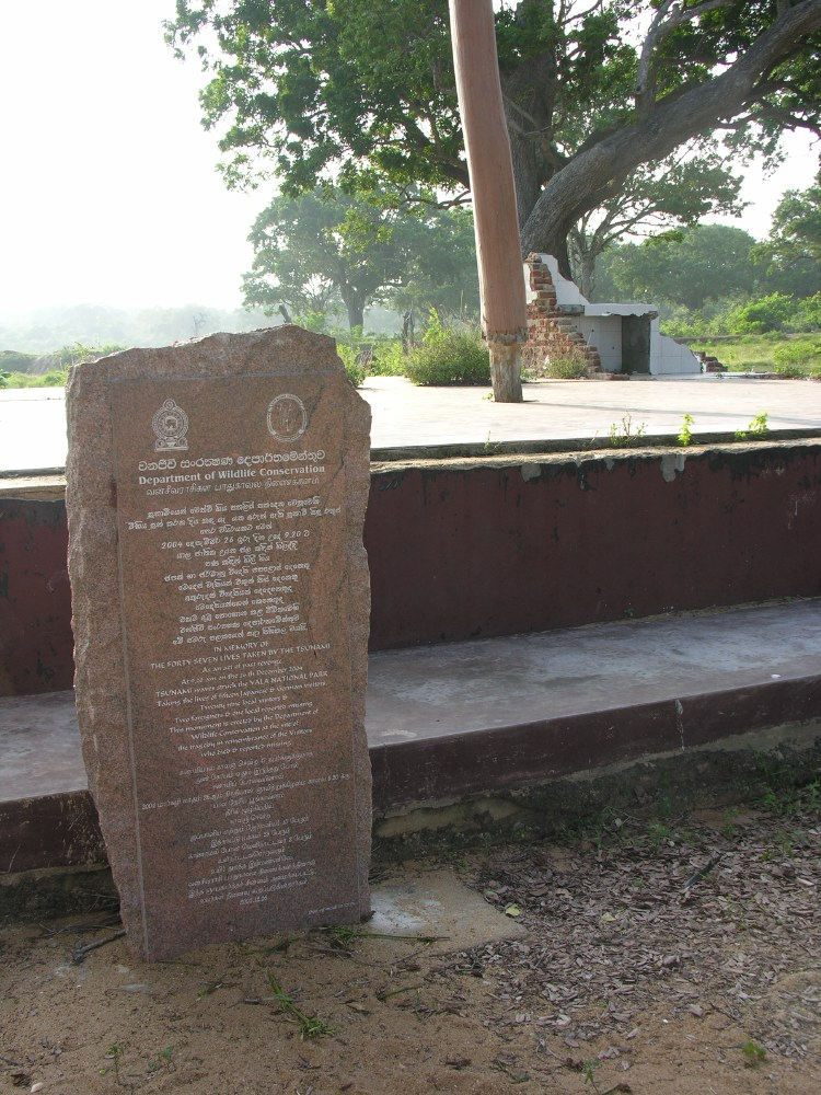 The park was badly damaged by the tsunami of 26th December 2004, with the destruction of the wildlife centre and tourist lodge.