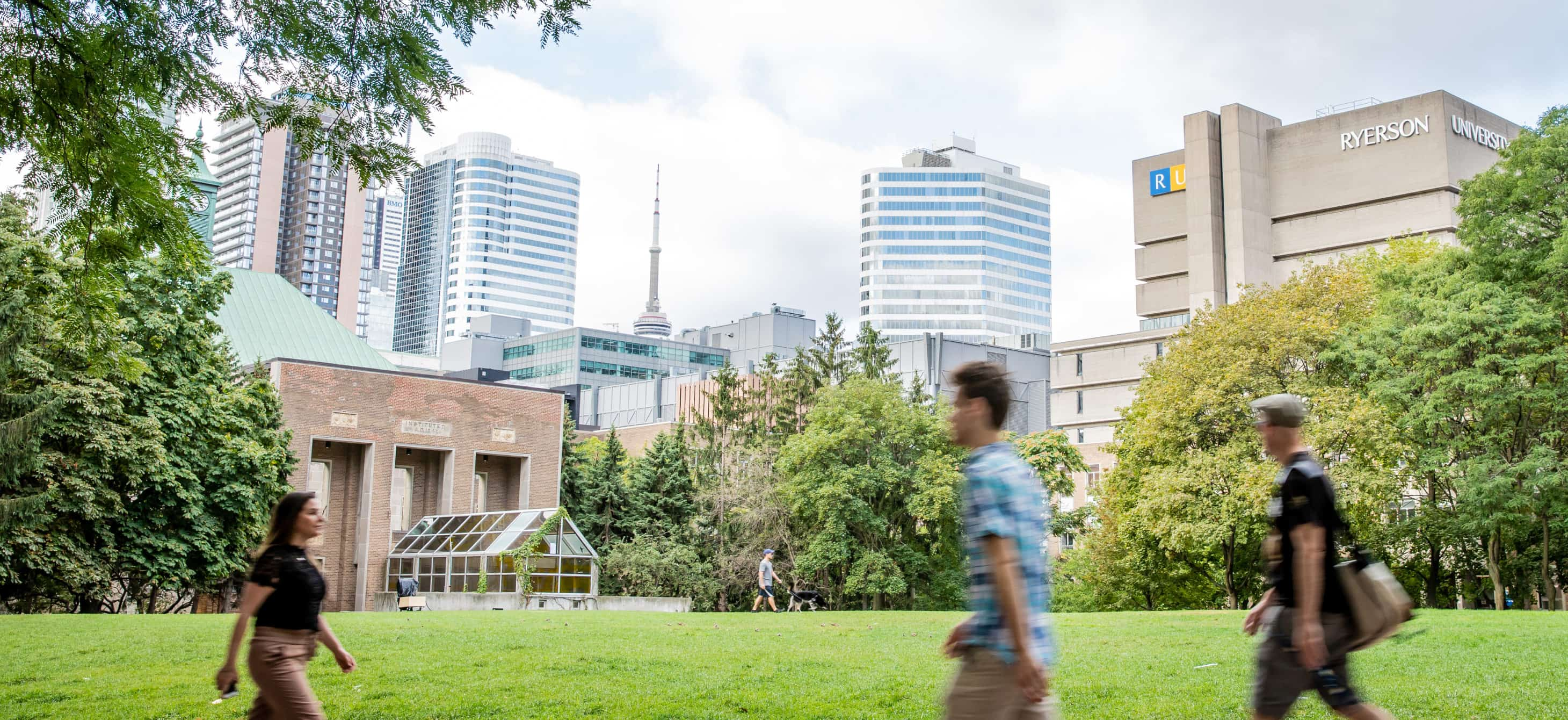 Ryerson quad with lots of greens and downtown in the background