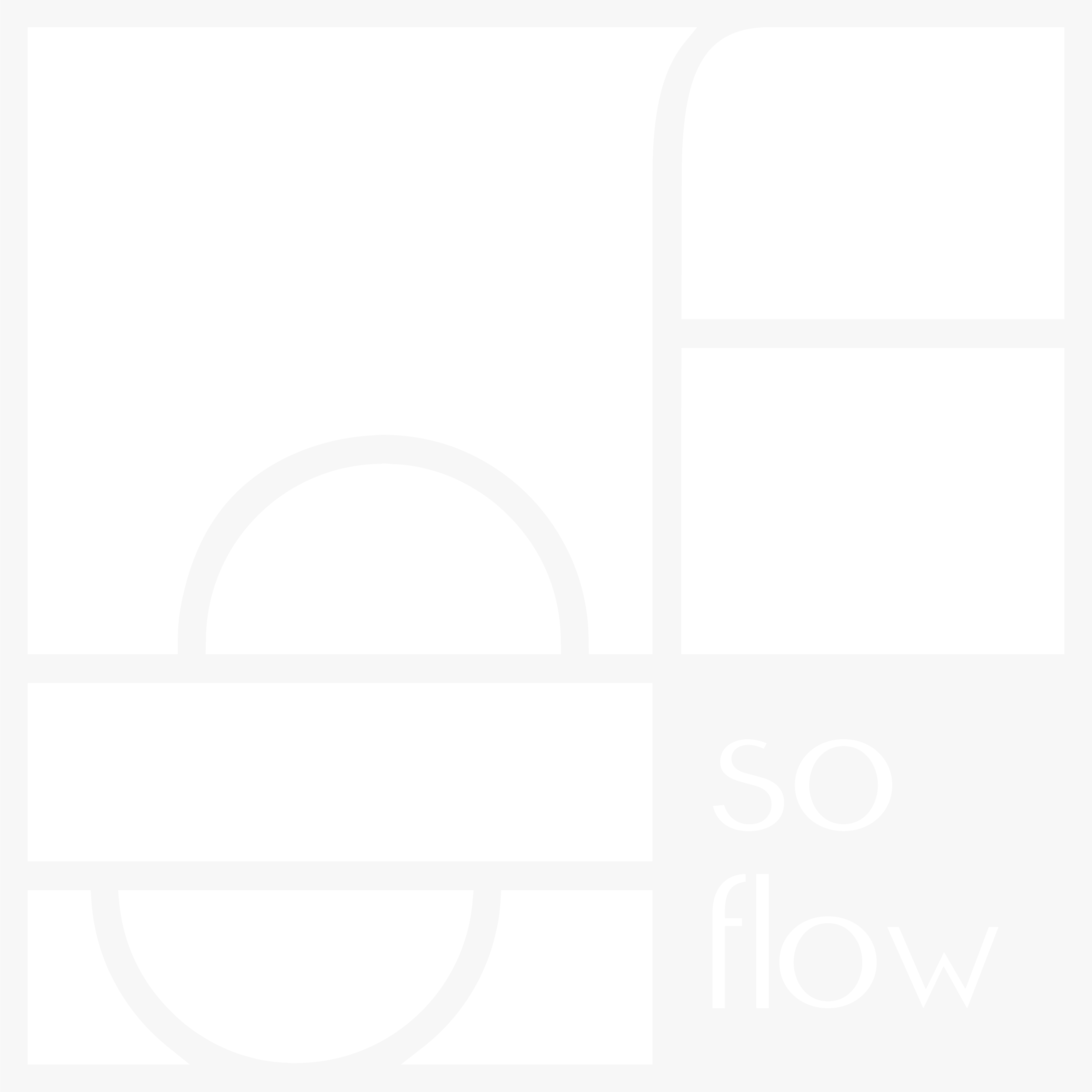 logo of soflow, job coach and professional organizer in white