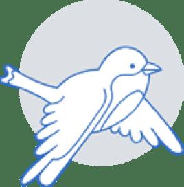 Silver bird image