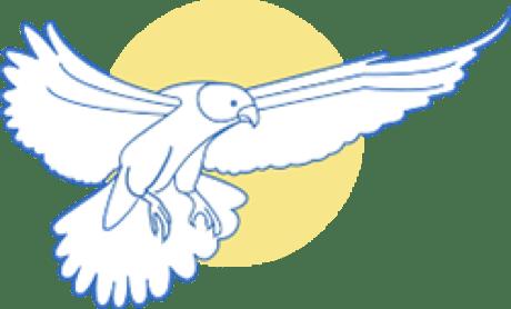 Gold plan bird