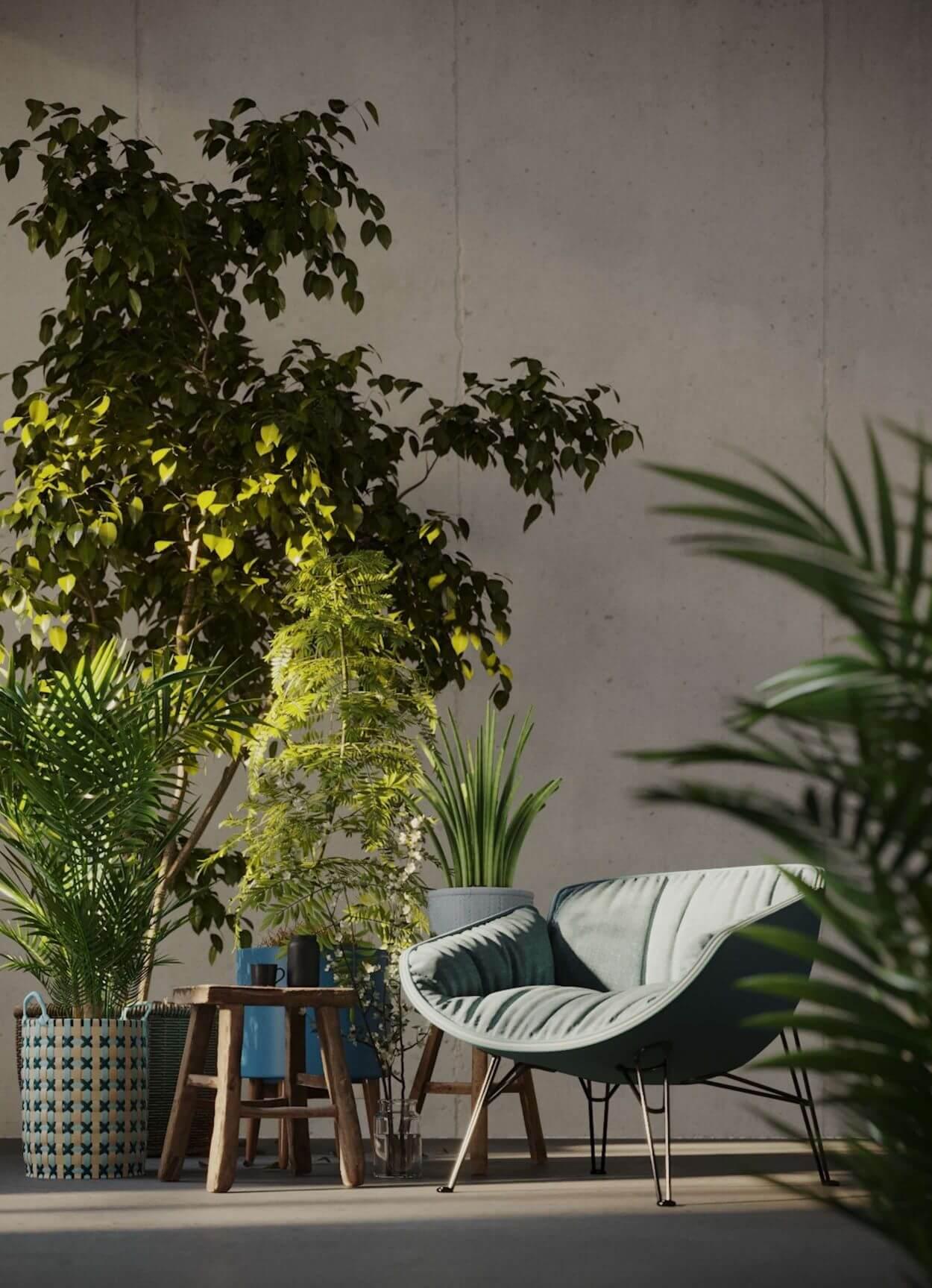 Pflanzen und Sofa in Szene gesetzt