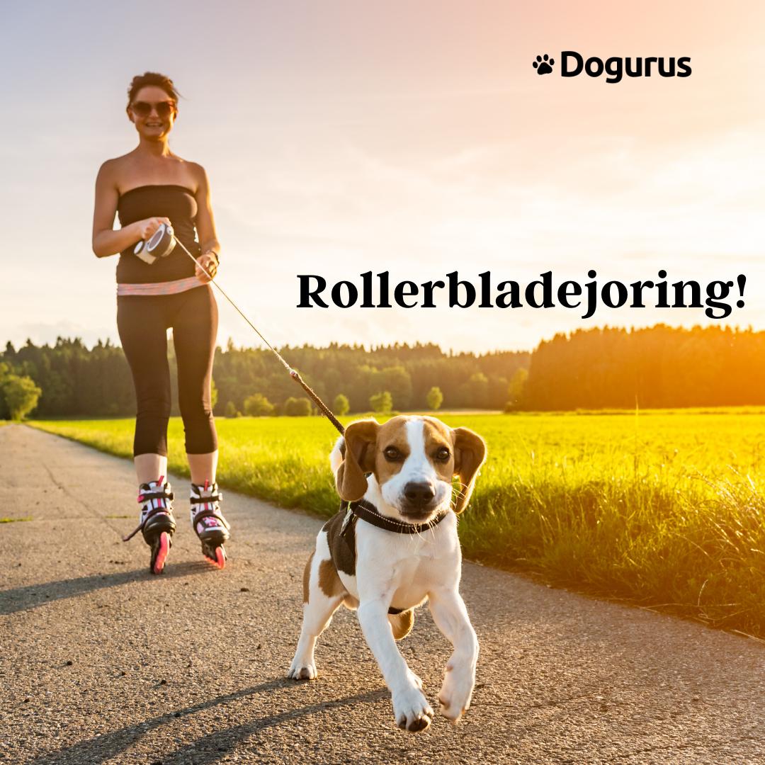 Dog and Owner Rollerbladejoring