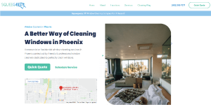 window cleaning client