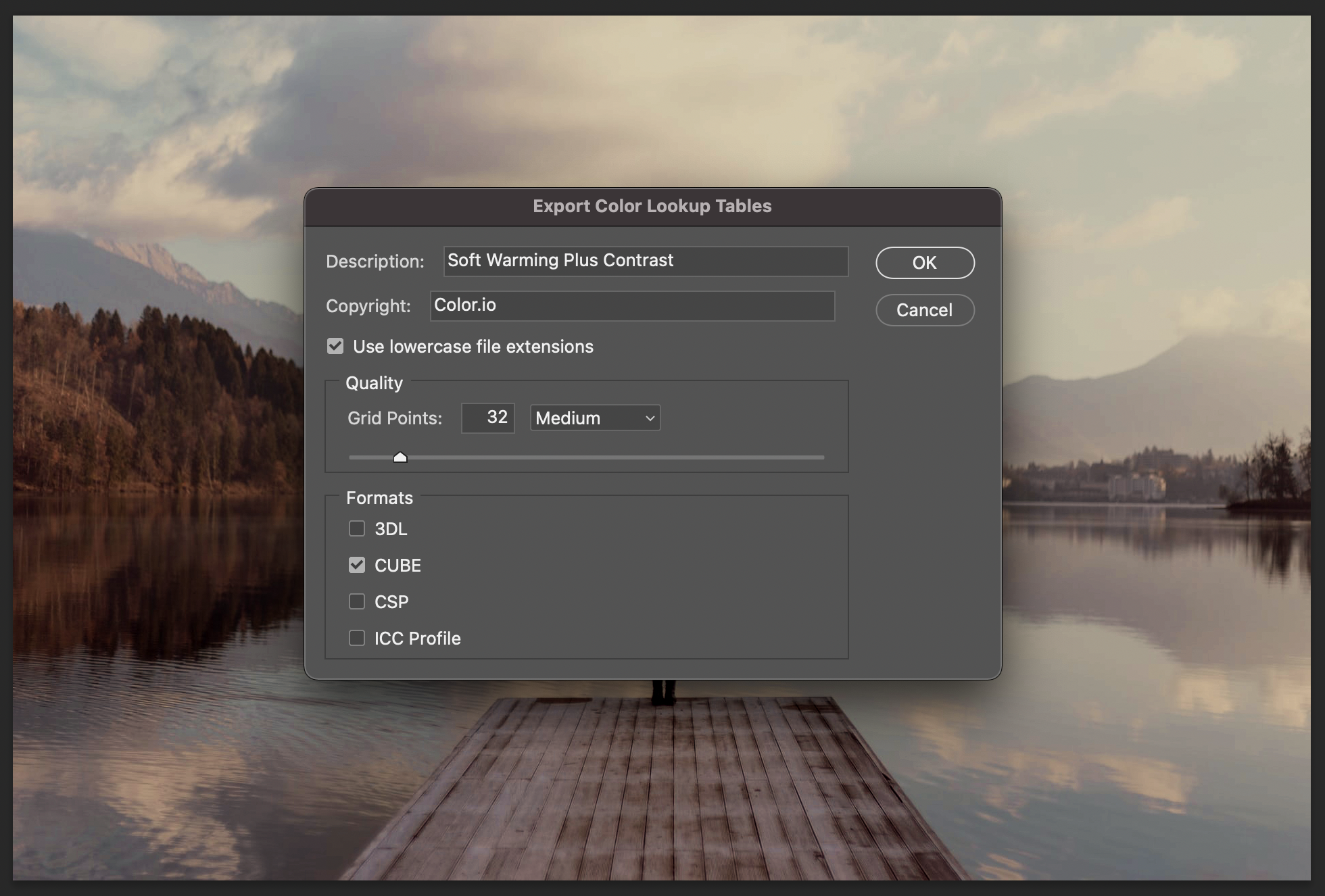 Color Lookup Tables Export Settings in Photoshop