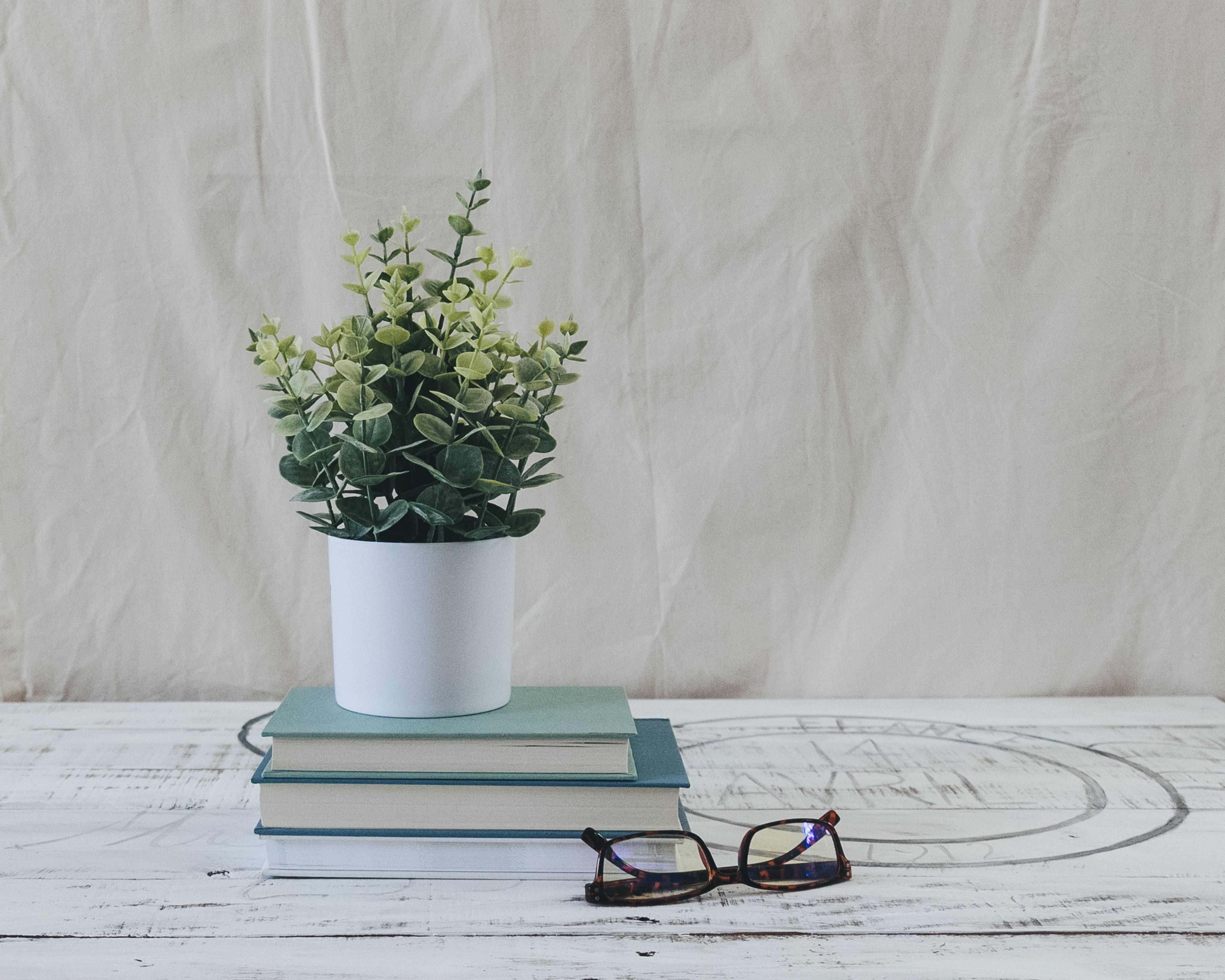 Potted plant on a stack of books, next to a pair of reading glasses