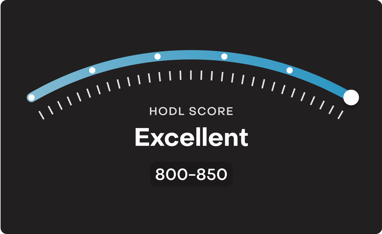 Hodl Score image