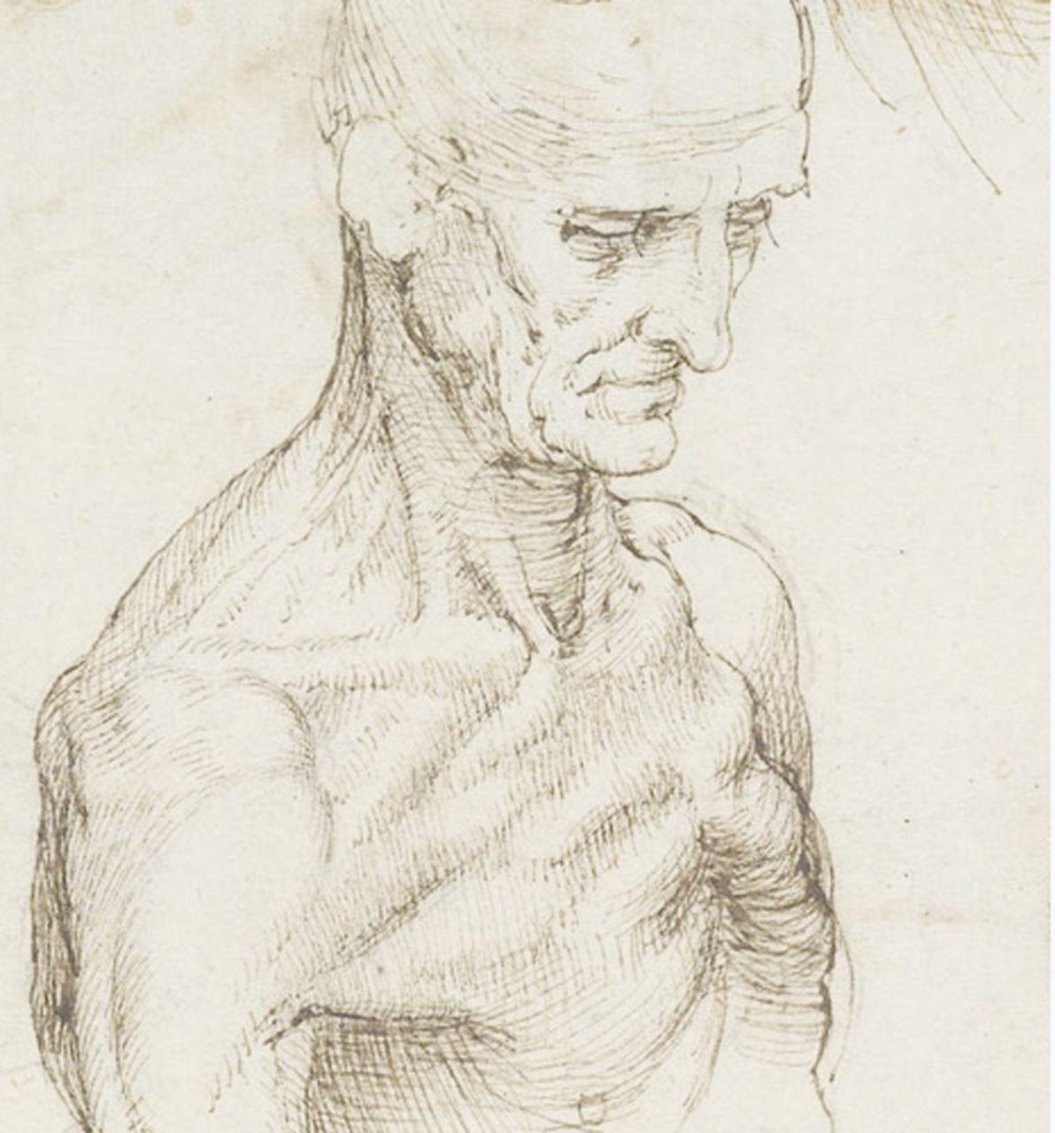 Leonardo divinci drawing of a man with pectus excavatum