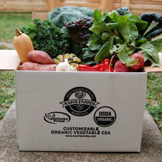 Vegetables and produce from Barr Farms CSAs near me