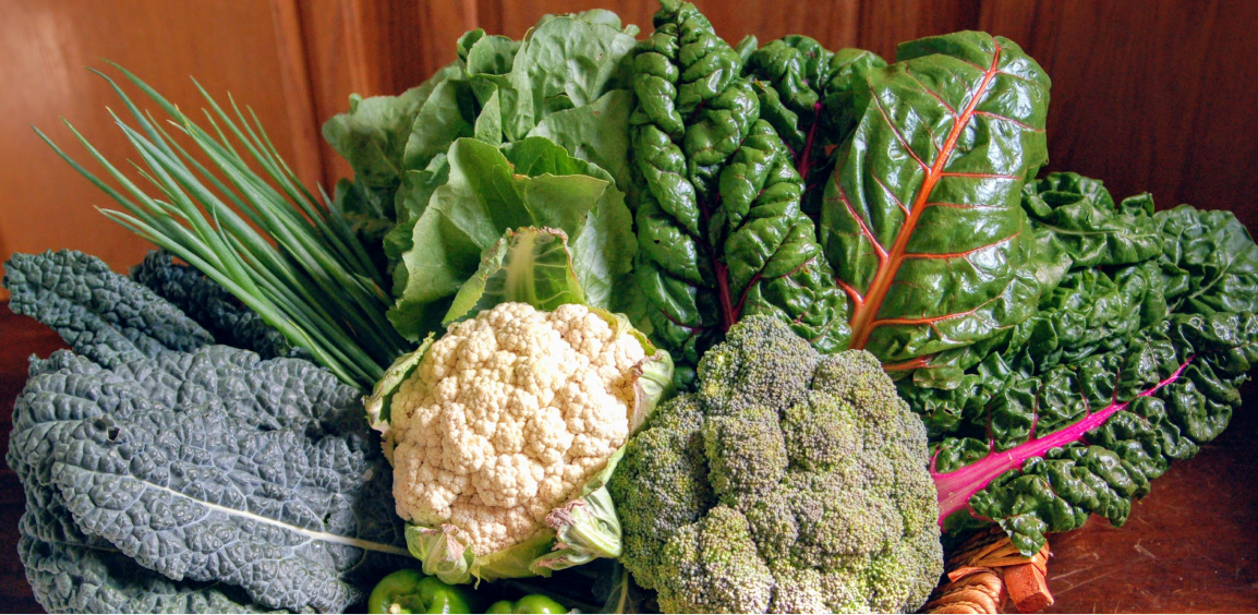 Photo of CSA vegetables for people interested in farms near me, organic farms near me, local farms
