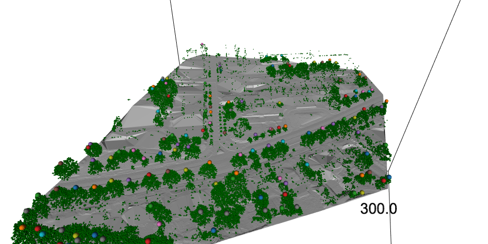 treetop point cloud