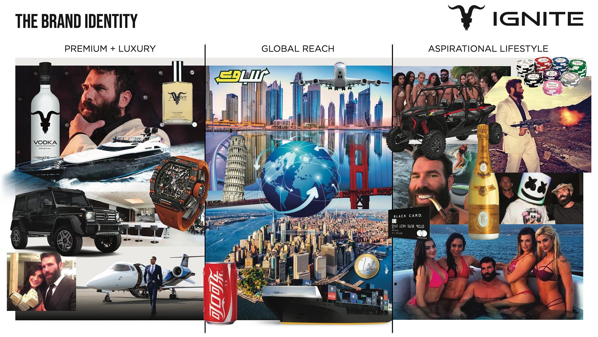 Ignite Brand Identity VLP