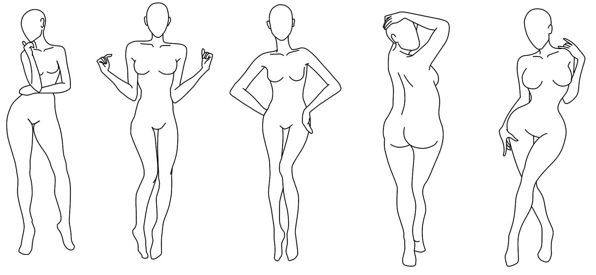 Morphologie dessin