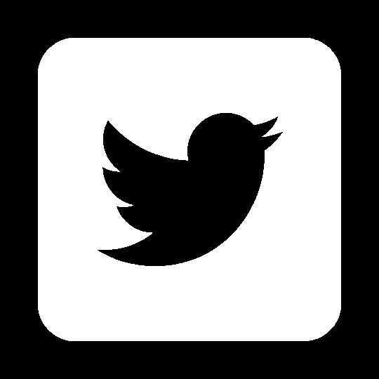 Twitter logo in white. ADA Drive