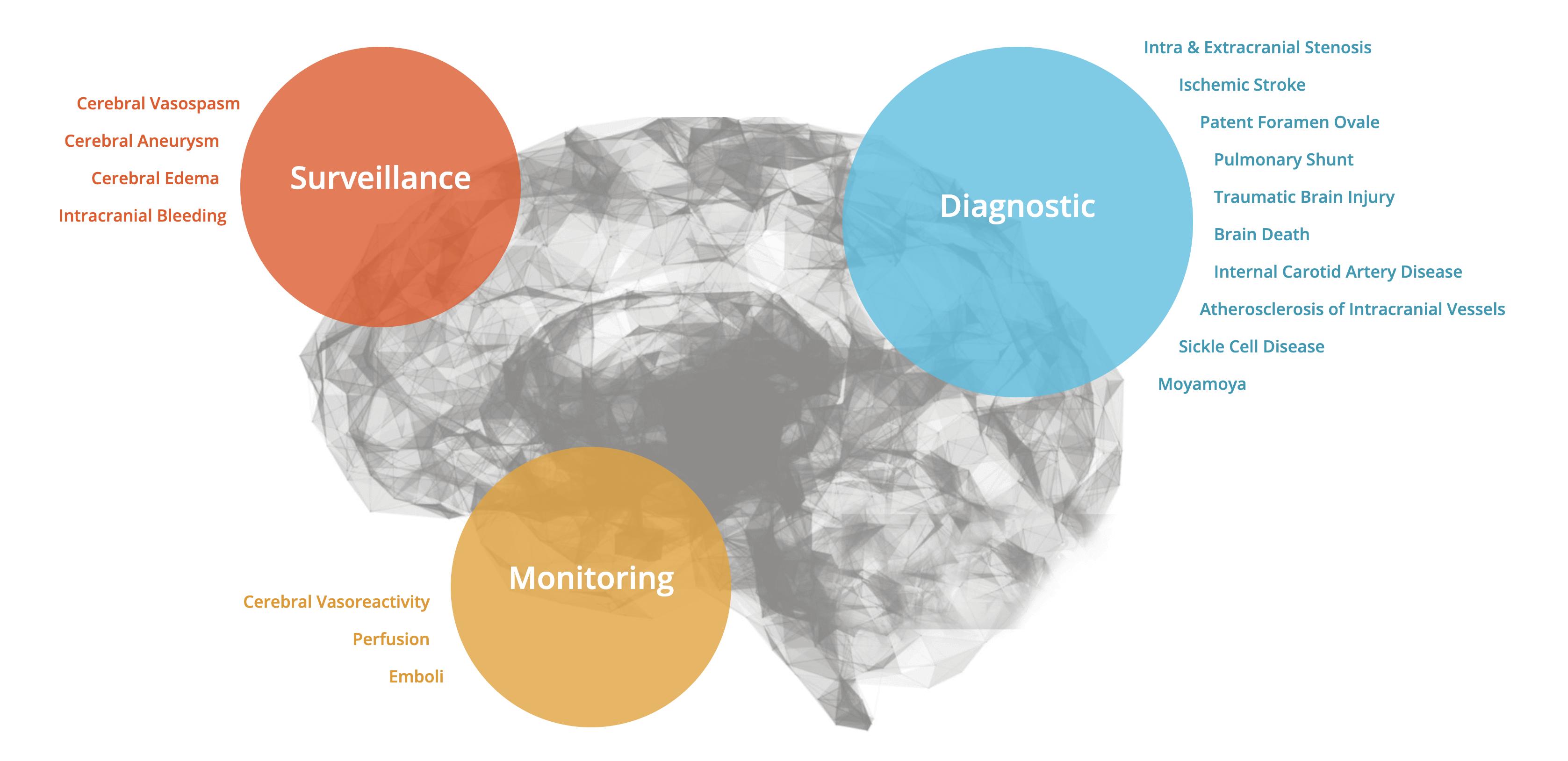 A brain diagram with information regarding vasospasm, aneurysm, edema, brain bleeds, profusion, shunt, PFO, stroke and etc.