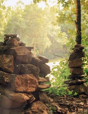 La forêt de Brocéliande.