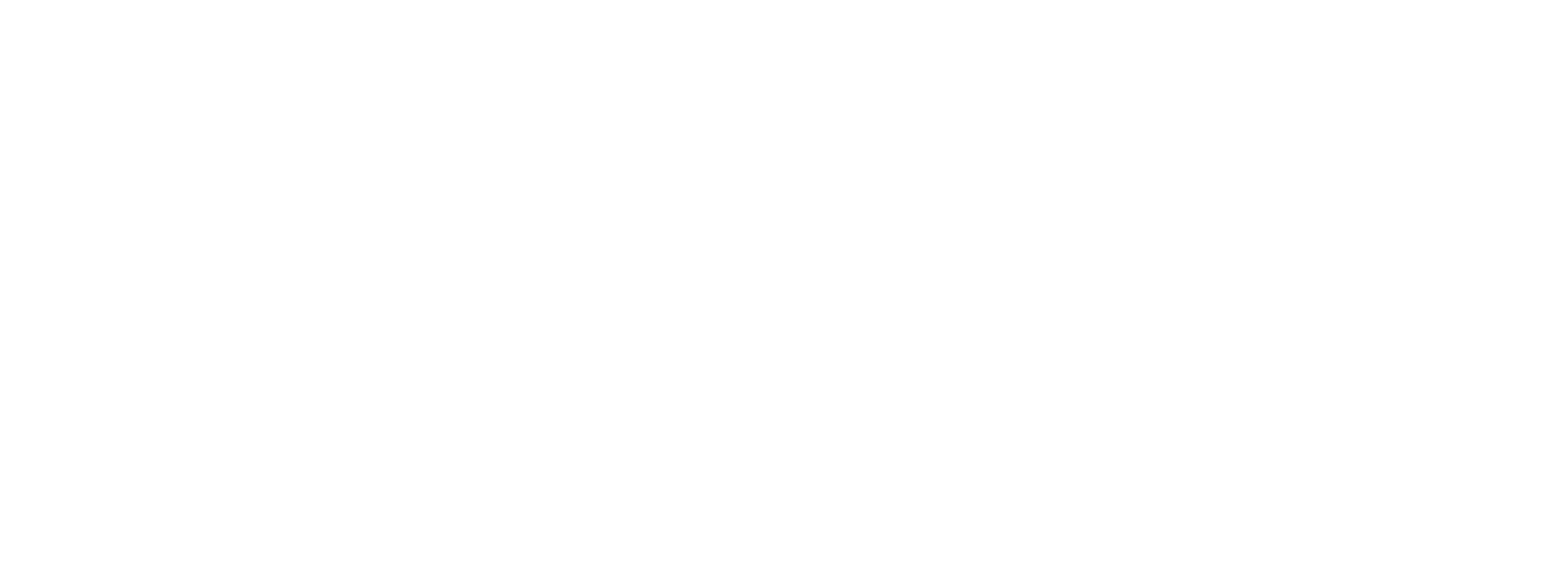 yaseen logo
