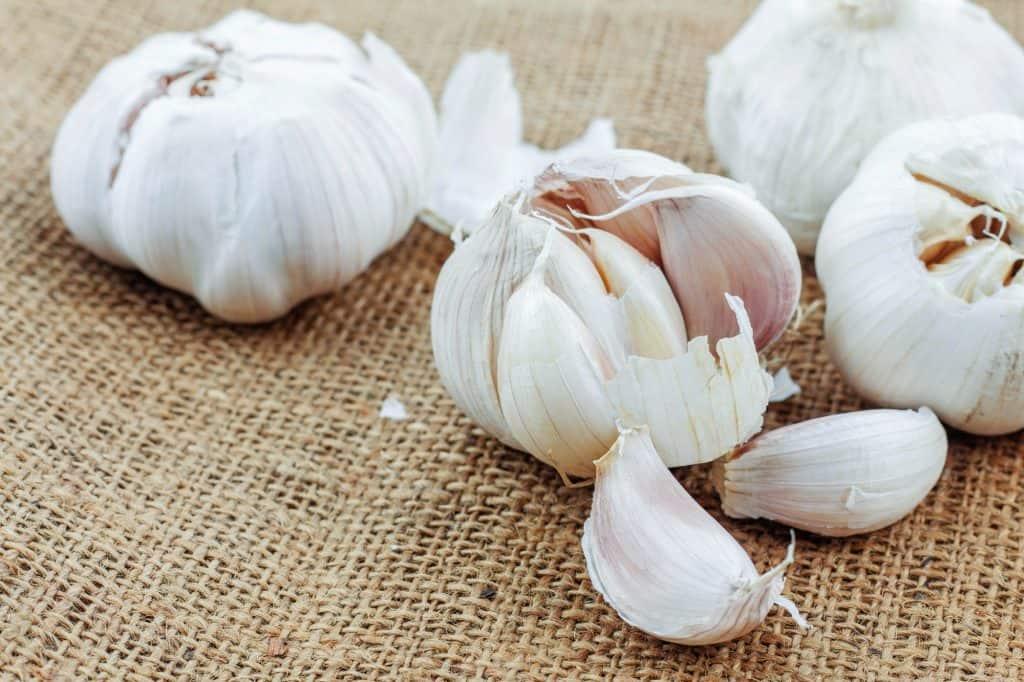 garlic on sack