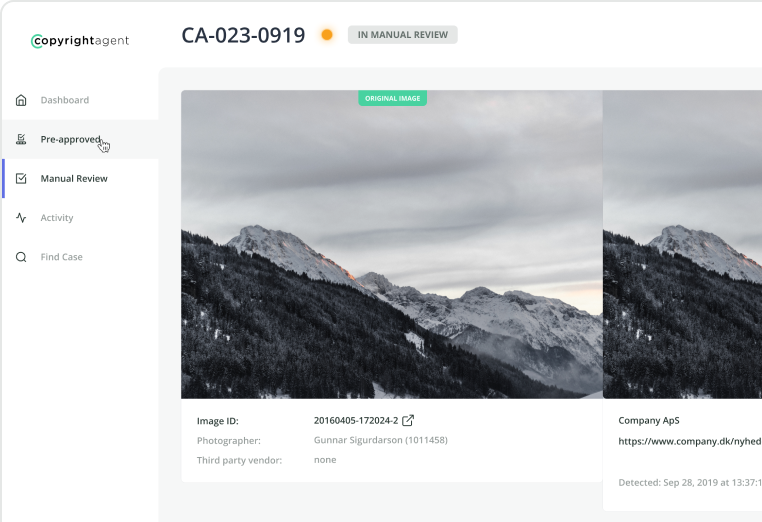Image Interface preview
