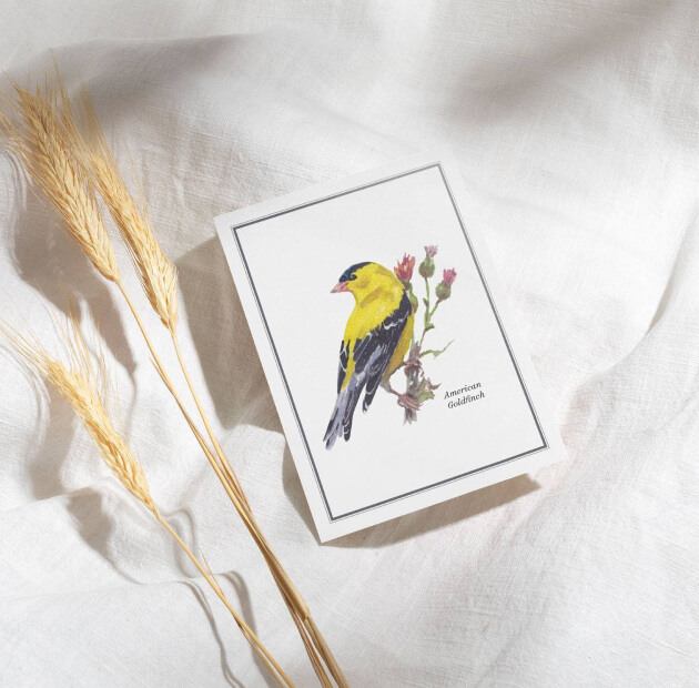 A greeting card with American Goldfinch bord placed on a white linen with what plant next to it.
