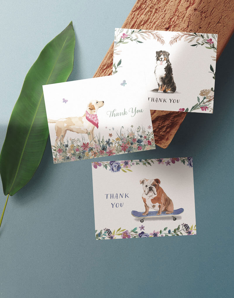 3 greeting cards with illustrated dogs placed on an orange rock and a green leaf.