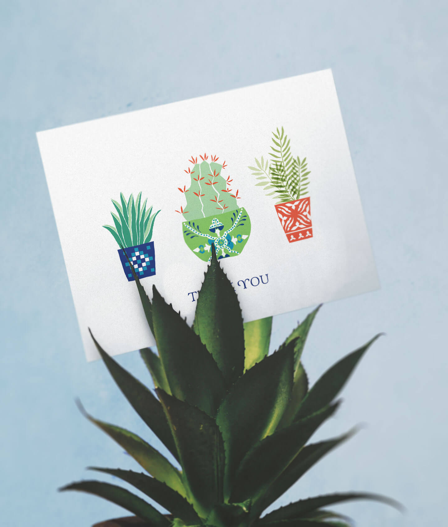 A greeting card with succulent illustration placed between cactus plant leaves.