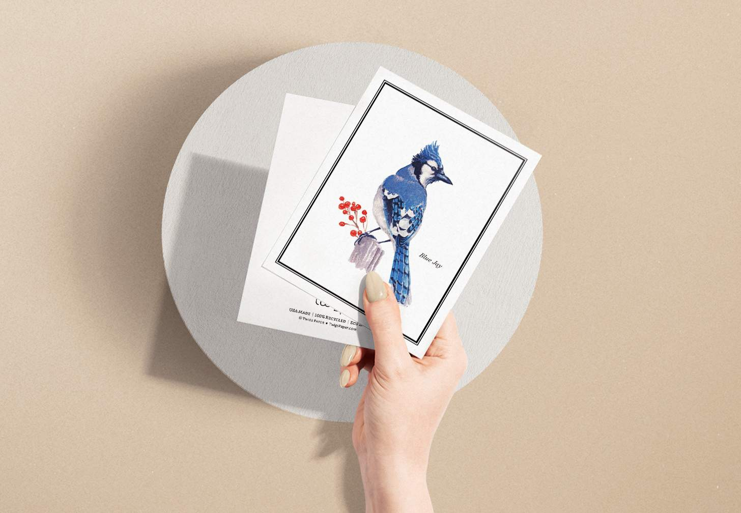Woman's hand holding card with Blue and white bird sitting on stump with circular background