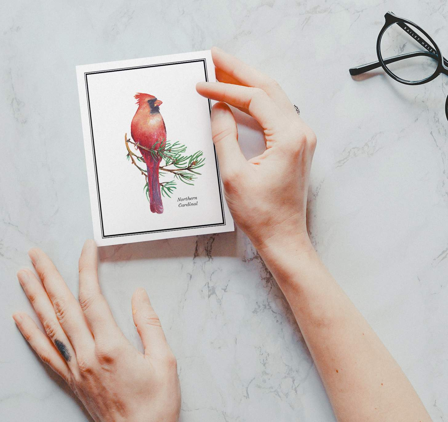 Woman's hand holding card with Red and black bird sitting on pine branch with marble background