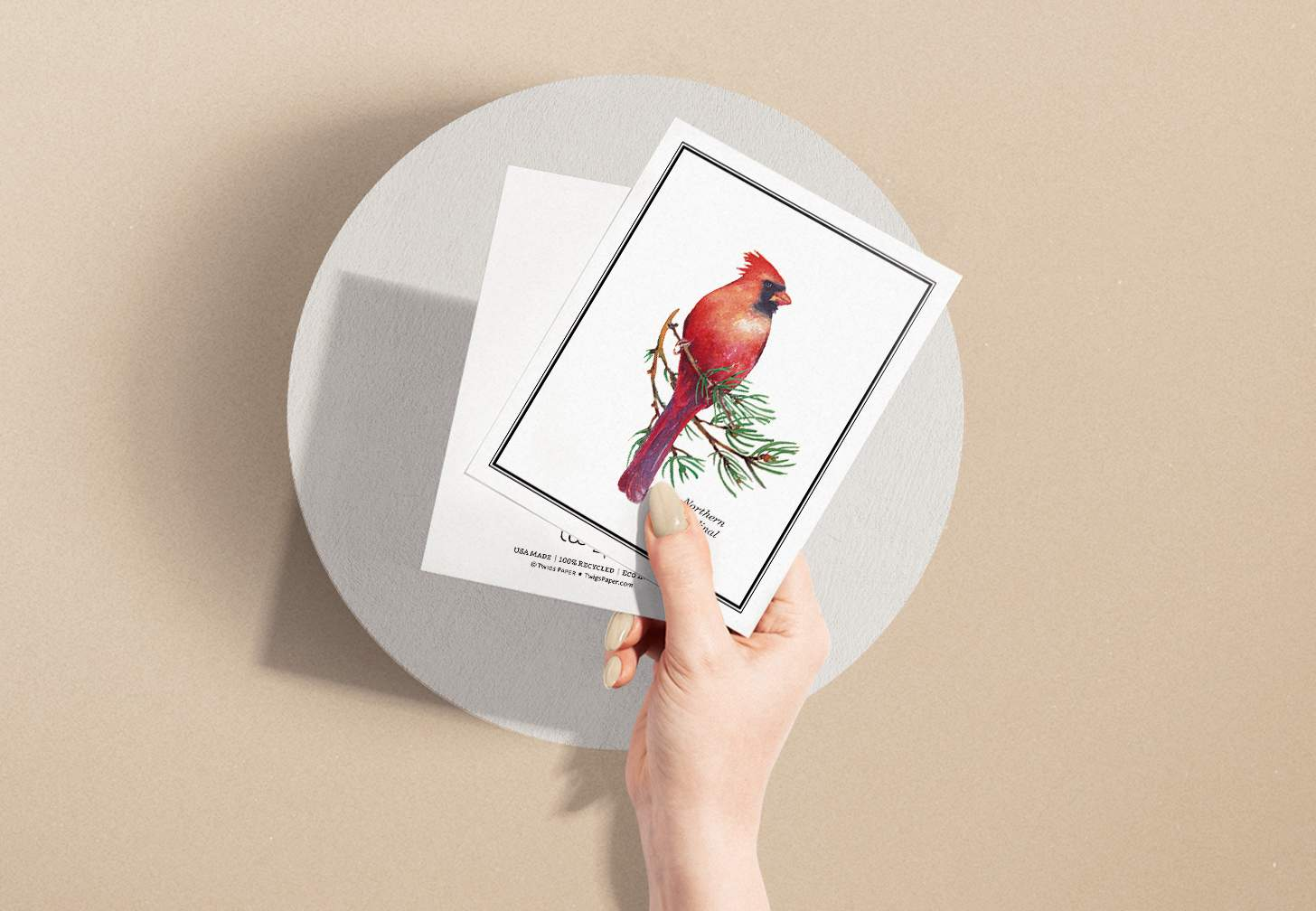 Woman's hand holding card with Red and black bird sitting on pine branch with circular background