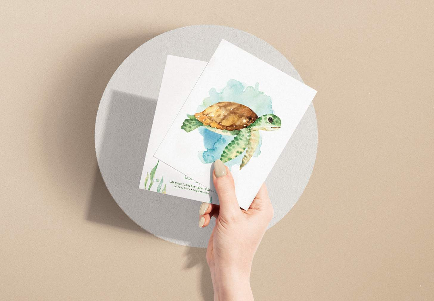 Woman's hand holding two cards with green and brown sea turtle swimming