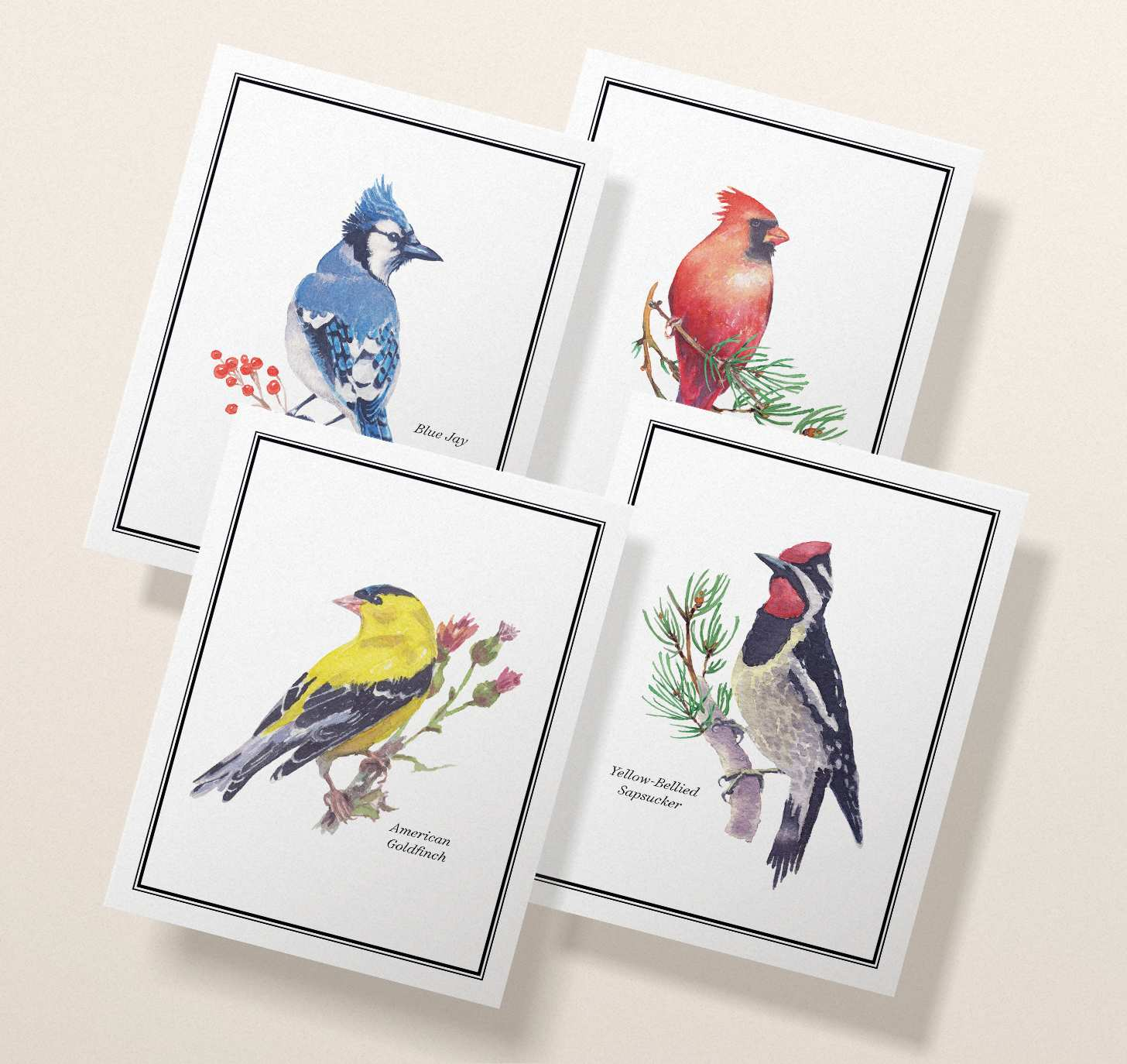 Four overlapping cards with goldfinch, sapsucker, blue jay, and robin designs