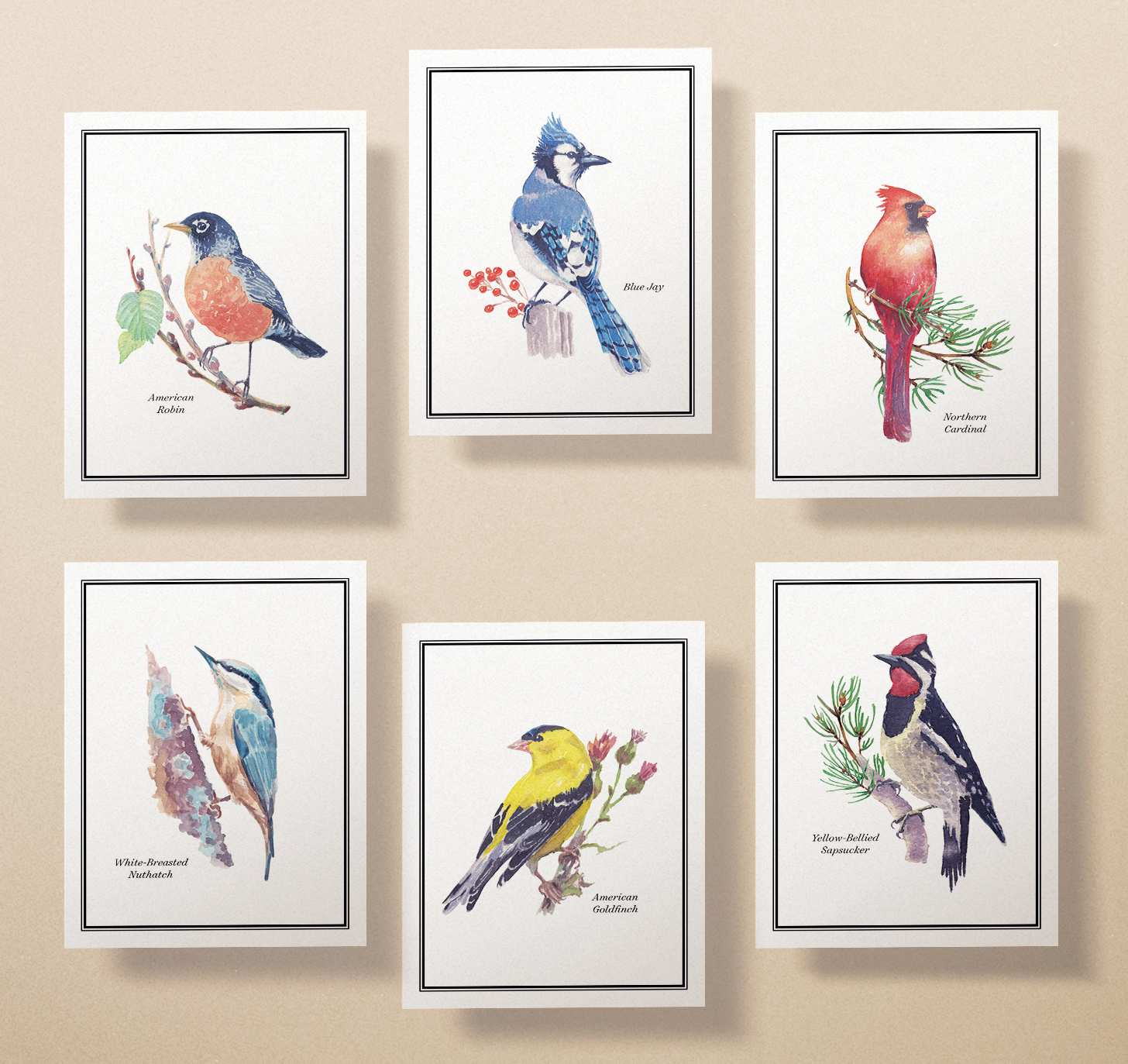 Six cards with robin, cardinal, white-breasted nuthatch, blue jay, yellow-bellied sapsucker, and goldfinch designs