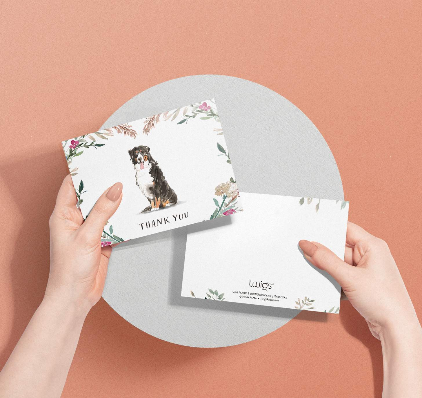 Woman's hands holding card with Bernese mountain dog design