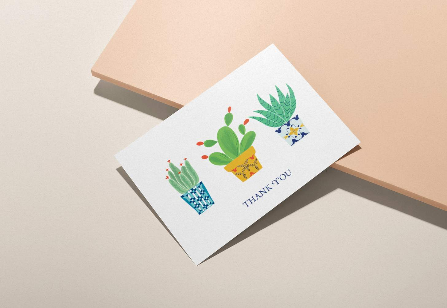 Three colorful cactus design card with pink background