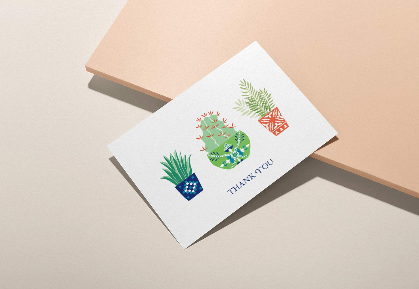 Three colorful cactus plant design card with pink background