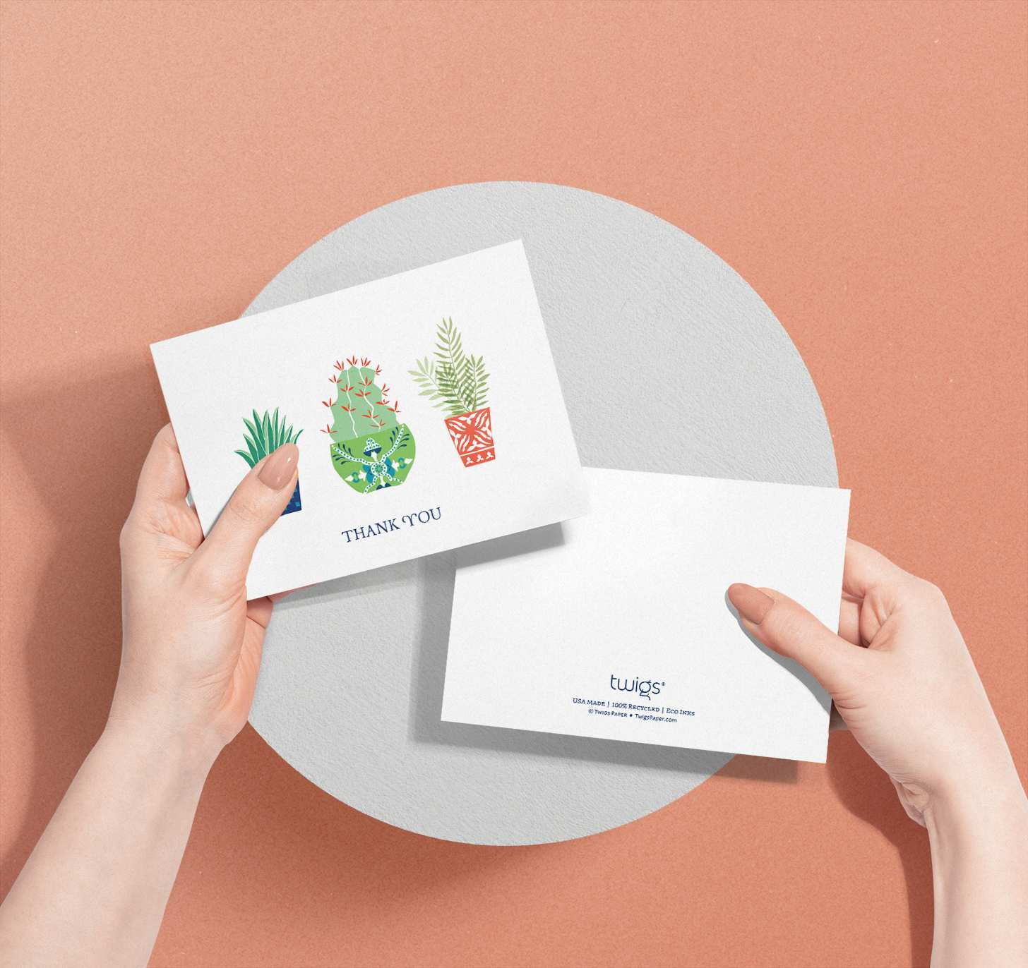 Hands holding card with three colorful cactus plant designs