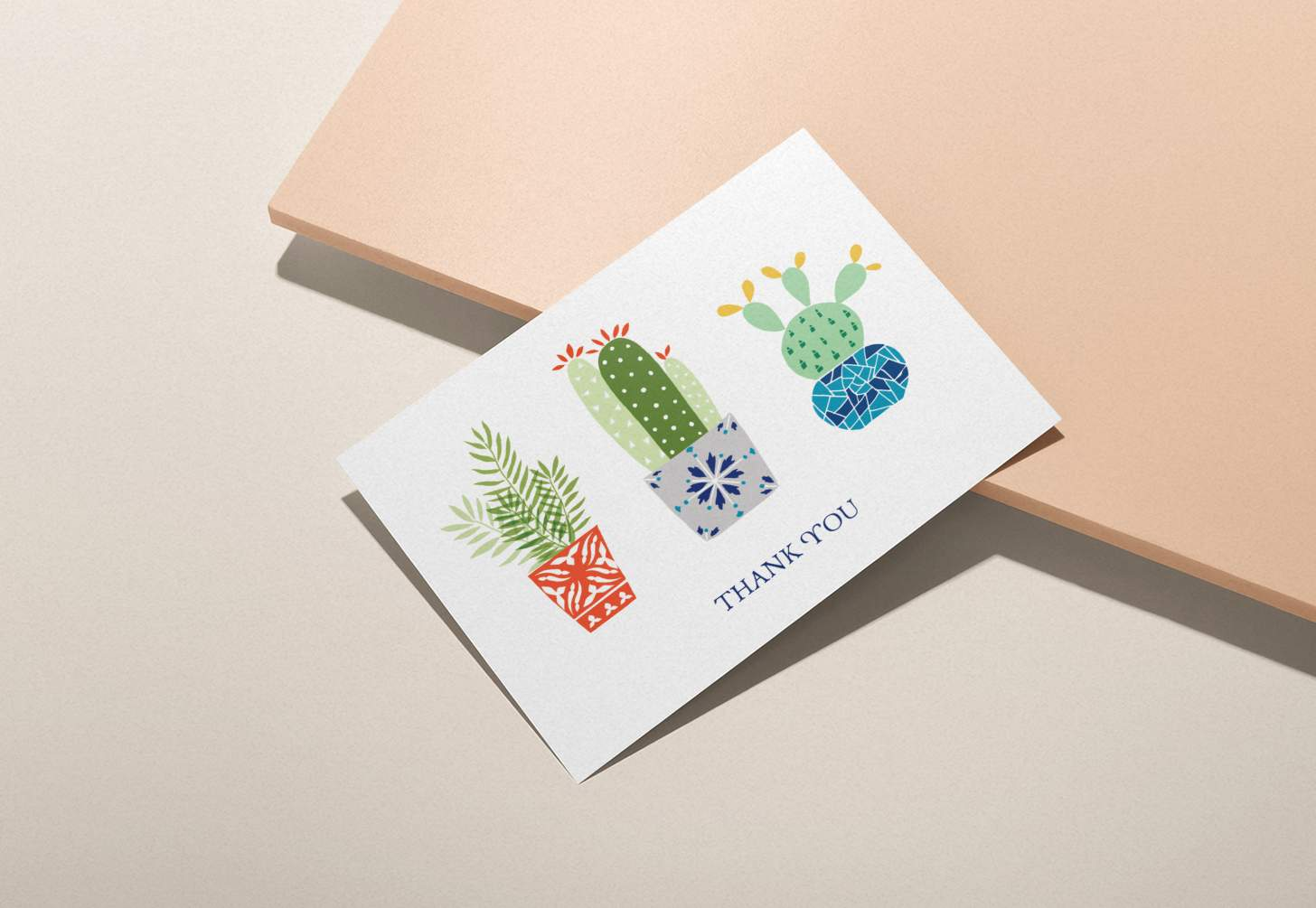 Three colorful succulent design card with pink background