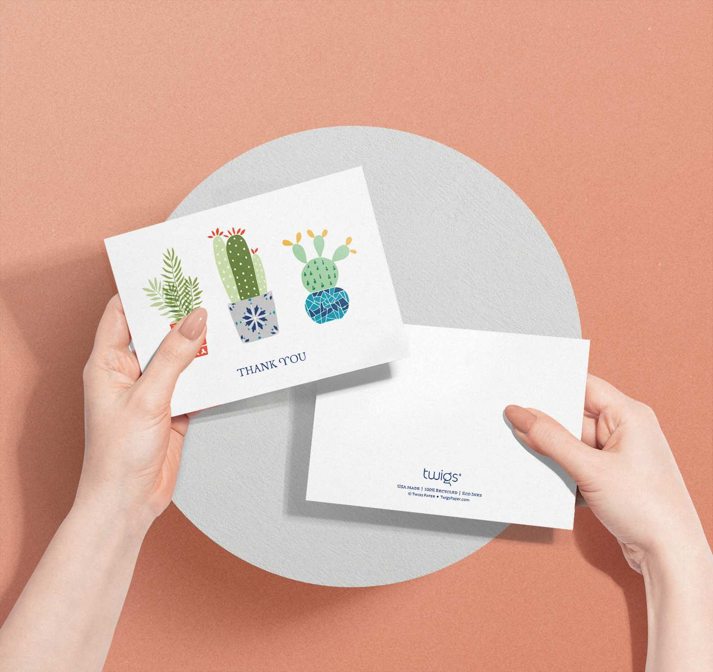Hands holding card with three colorful succulent designs