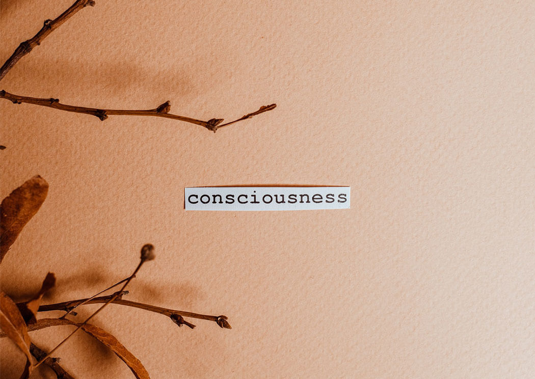 Consciousness Word on an Orange background with flower branches around.