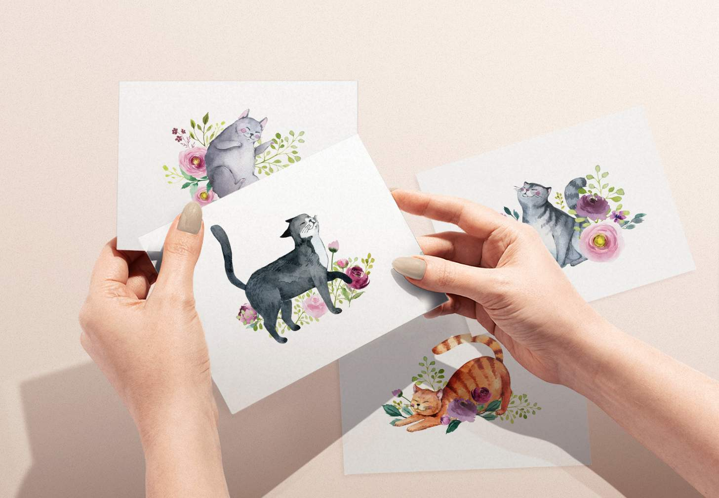 Hands holding black and white cat card with flowers with various cat designs in background