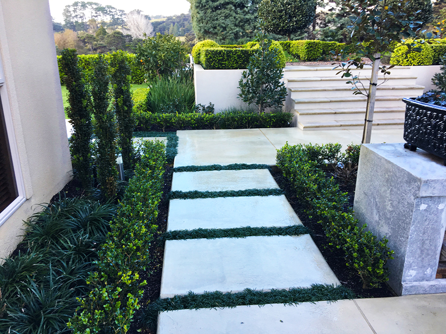 Courtyard landscaped 4