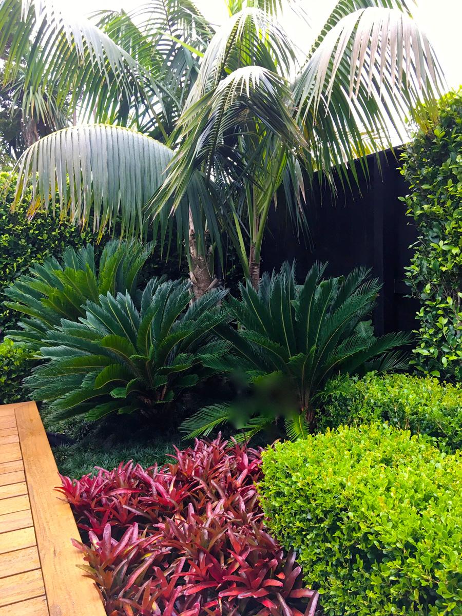 Landscaped garden 1