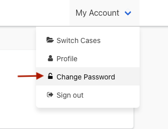 The Change Password link is in the My Account menu
