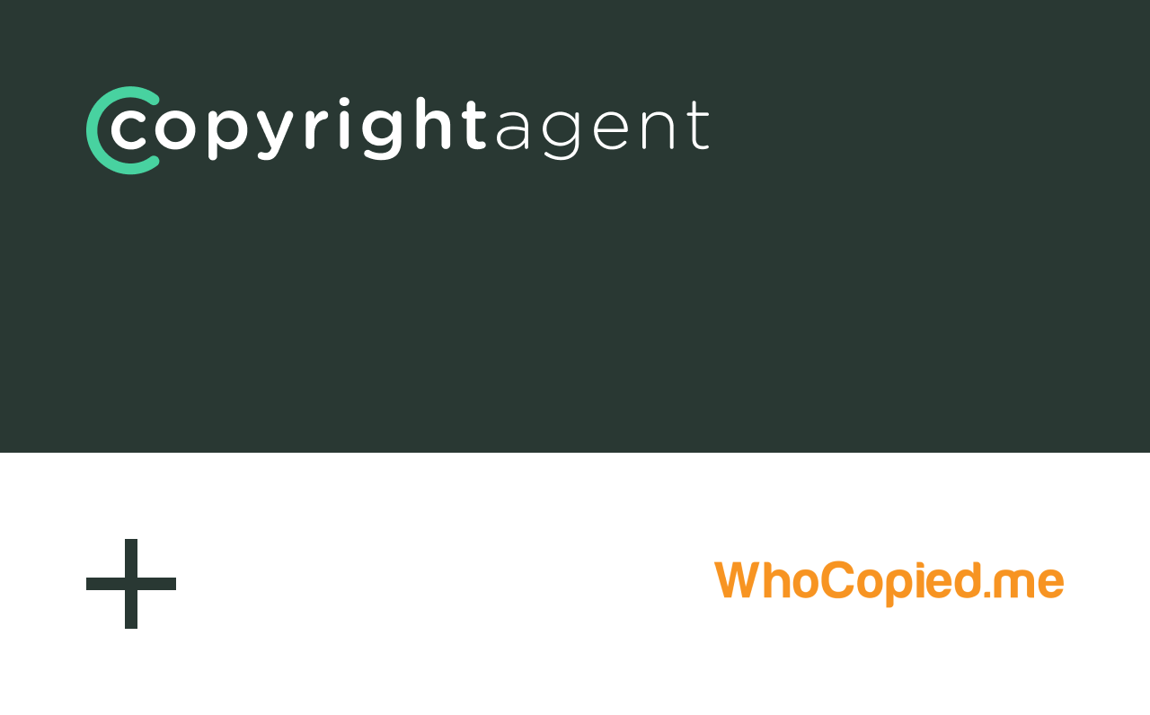 We're Happy to Finally Announce our Acquisition of WhoCopiedMe!