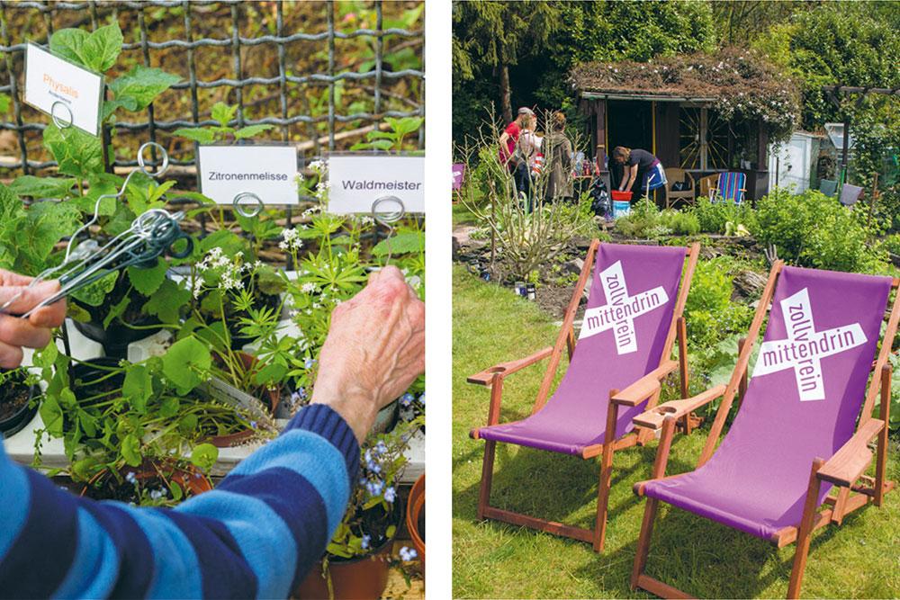 Gärtnern im Gemeinschaftsgarten