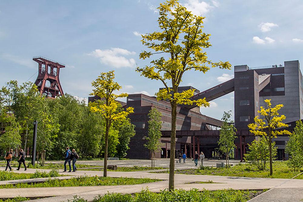 Joggen durch Industrienatur auf Zollverein