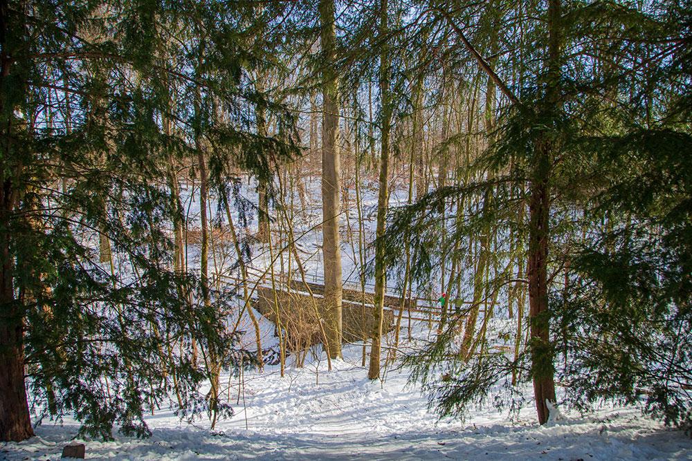 Winterliche Spaziergänge in Essen Margarethenwald © offguide