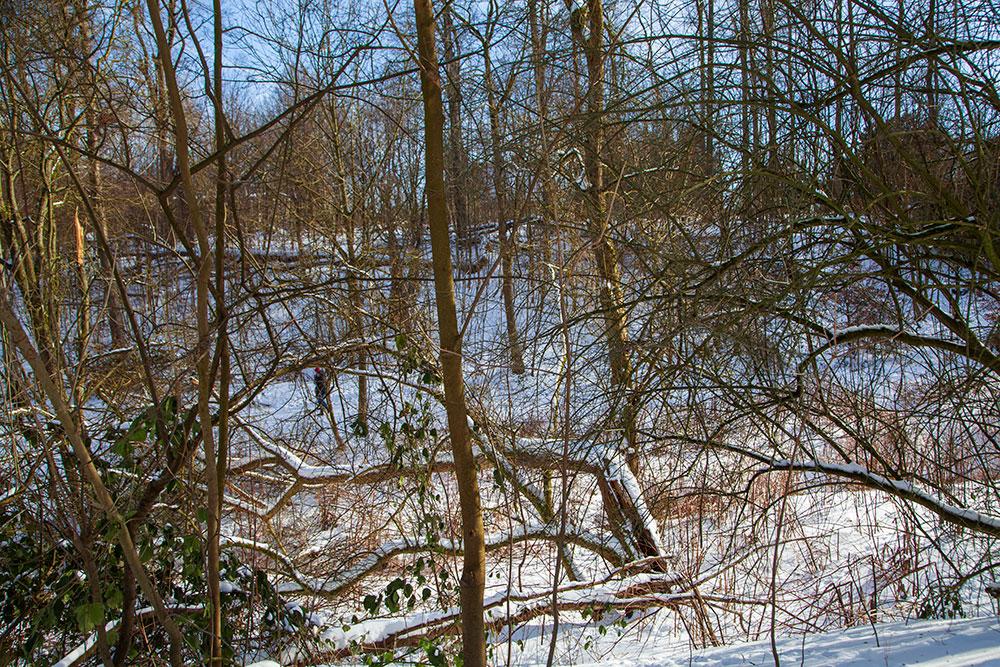 Winterliche Spaziergänge in Essen Pausmühlenbach © offguide